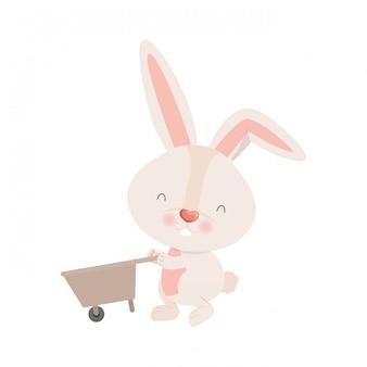 Bunny met kruiwagen geïsoleerd pictogram