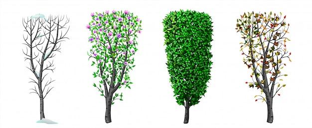 Bush en seizoen winter lente herfst zomer
