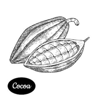 Cacao hand getrokken.