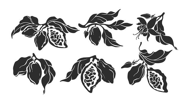 Cacao set botanische kunstschets van boon fruit blad bloem