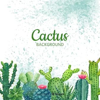 Cactus achtergrond