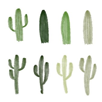 Cactus collecties vector ontwerp