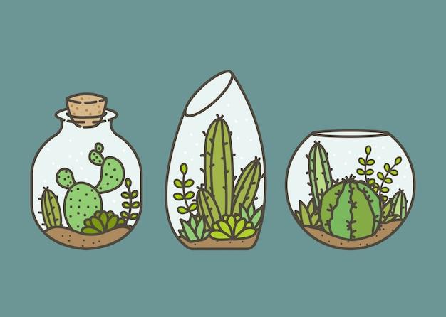 Cactus en succulente terraria ingesteld