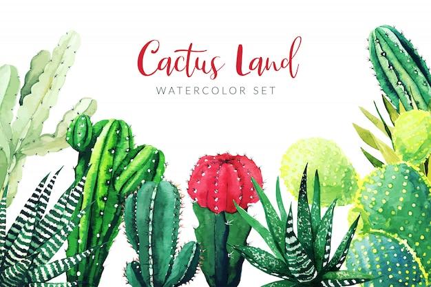 Cactus en vetplanten planten, horizontale achtergrond