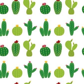 Cactus icoon collectie naadloze patroon achtergrond