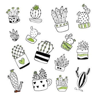 Cactus illustratie collectie