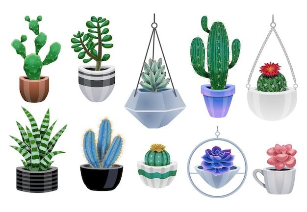 Cactus in pot set met geïsoleerde iconen van kleurrijke cactusplanten en potten