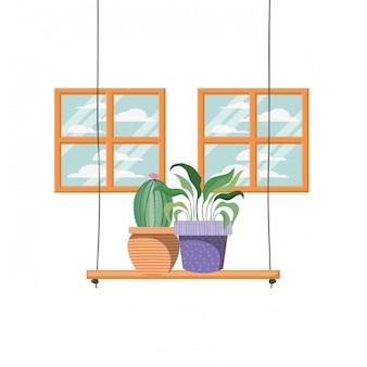 Cactus met pot op plank