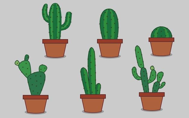 Cactus op de pot
