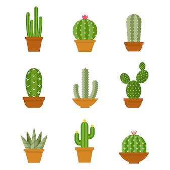 Cactus pictogrammen in een vlakke stijlenset