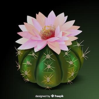 Cactus plant in realistische stijl