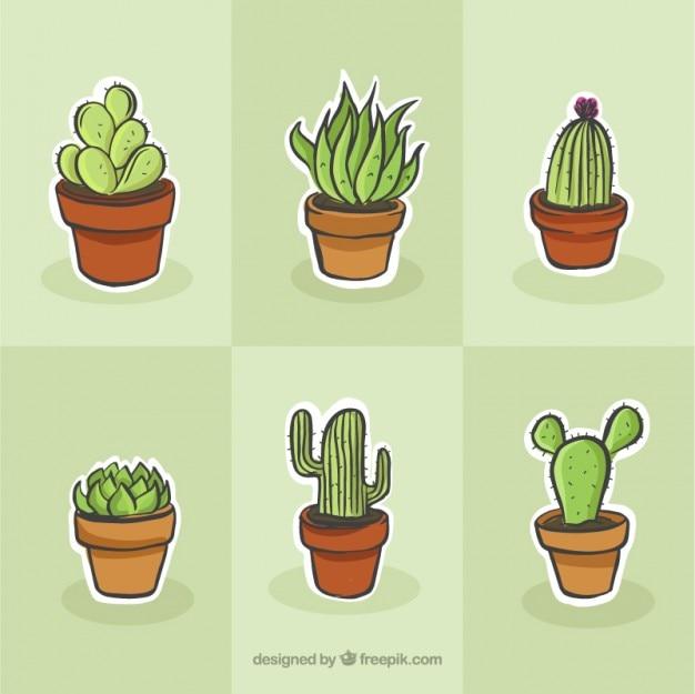 Cactus tekening set