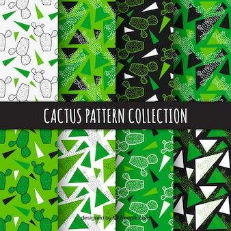 Cactuspatronen met moderne stijl