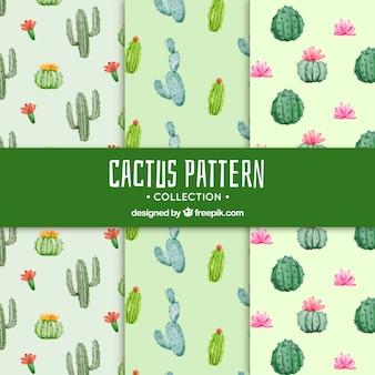 Cactuspatronen met mooie stijl