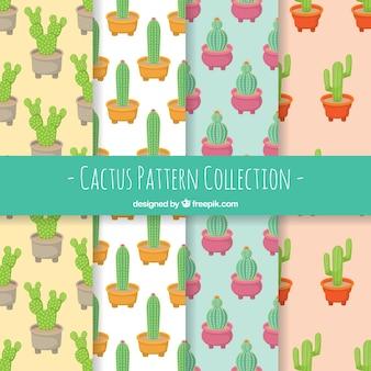 Cactuspatronen met schattige stijl