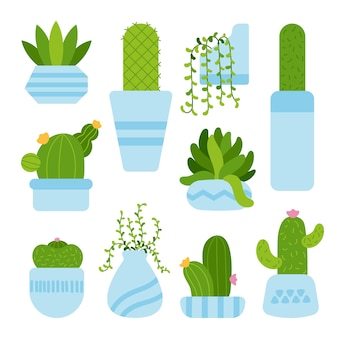 Cactusruimte hand getrokken stijl