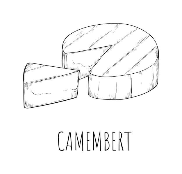 Camembert kaas zuivelproduct schets tekening geïsoleerd