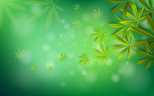 Cannabis blad groen medicijn marihuana kruid achtergrond