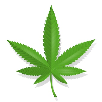 Cannabis leaf pictogram