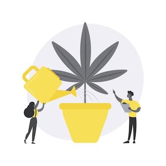 Cannabisteelt abstract concept