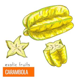 Carambola. kleur vectorillustratie.