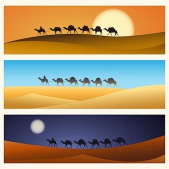 Caravan van kamelen in woestijn
