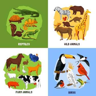 Cartoon 2x2 dierentuinafbeeldingen