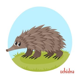 Cartoon afbeelding voor kinderboeken van echidna op witte achtergrond