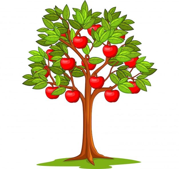 Cartoon appelboom geïsoleerd