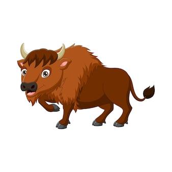Cartoon bizon geïsoleerd op een witte achtergrond