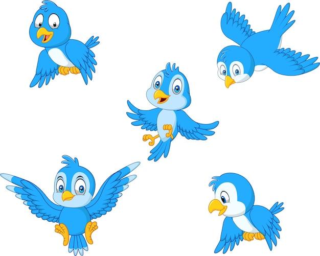 Cartoon blauwe vogel collectie set