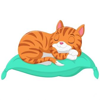 Cartoon de kat slaapt op een kussen