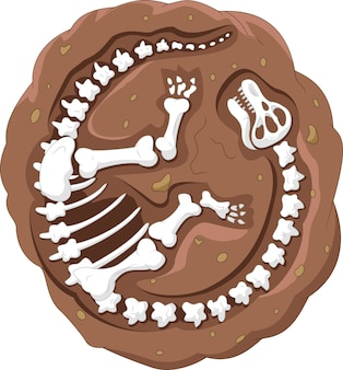 Cartoon dinosaurus fossiel