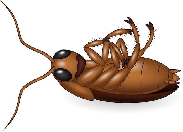 Cartoon dode kakkerlak