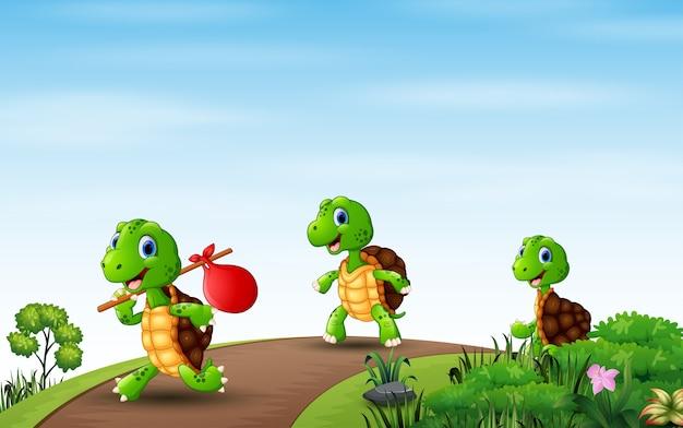 Cartoon drie schildpadden die op de weg rennen