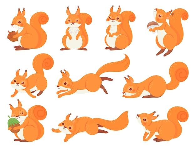 Cartoon eekhoorn