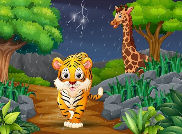 Cartoon een tijger en giraffe in een bos onder de regen