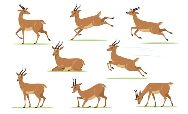 Cartoon gazelle set
