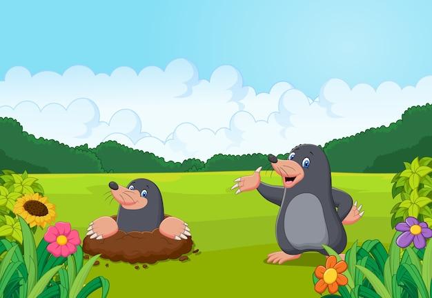 Cartoon gelukkig mol in het bos