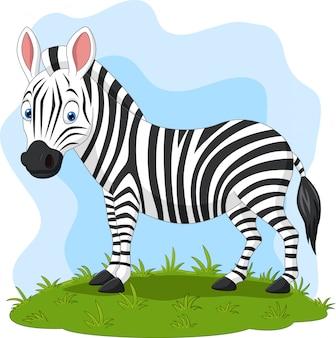Cartoon gelukkig zebra in het gras