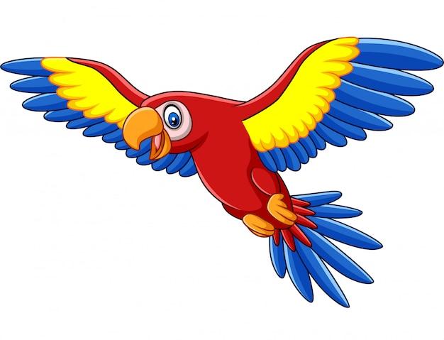 Cartoon grappige ara vliegen