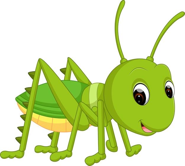 Cartoon grappige cricket