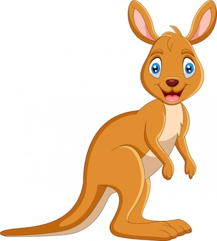 Cartoon grappige kangaroo lacht