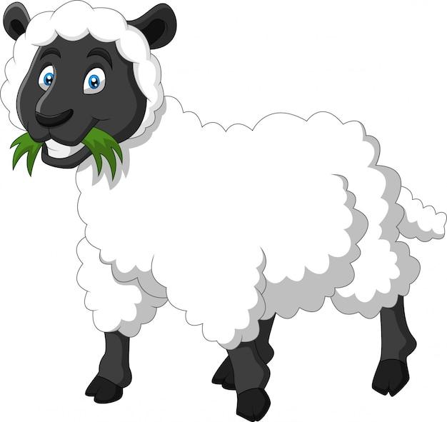 Cartoon grappige schapen een glimlach