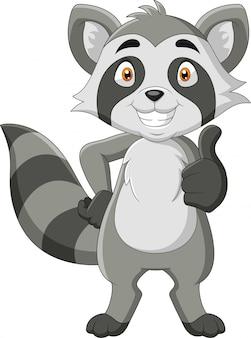 Cartoon grappige wasbeer duim omhoog