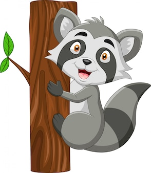 Cartoon grappige wasbeer houdt hout