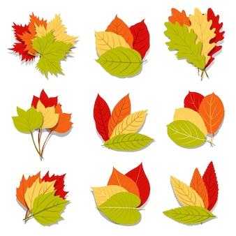 Cartoon herfstbladeren collectie