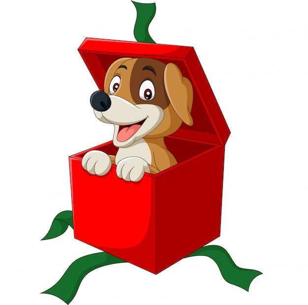 Cartoon hond gluren uit rode geschenkdoos