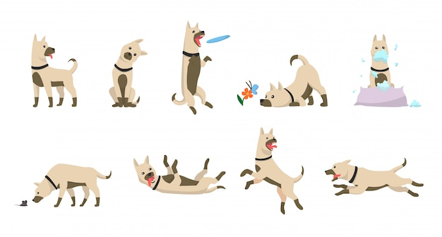 Cartoon hond set