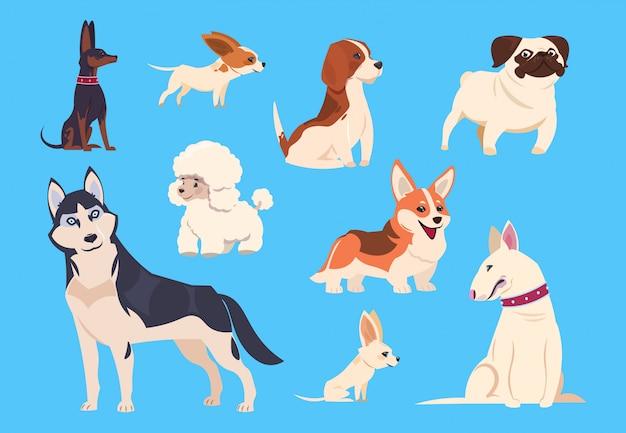 Cartoon hondenrassen. corgi en husky, poedel en beagle, pug en chihuahua, bull terrier. komische gezelschapsdieren karakters